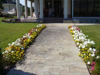 Засаждане на цветя в групи