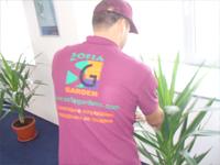 Поддръжка на саксийни растения