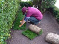 Затревяване с тревен чим