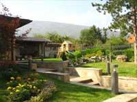 Красива зелена площ в частен двор