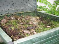 Компостиране на растителни отпадъци