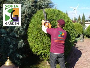 Подрязване на храсти с моторен храсторез