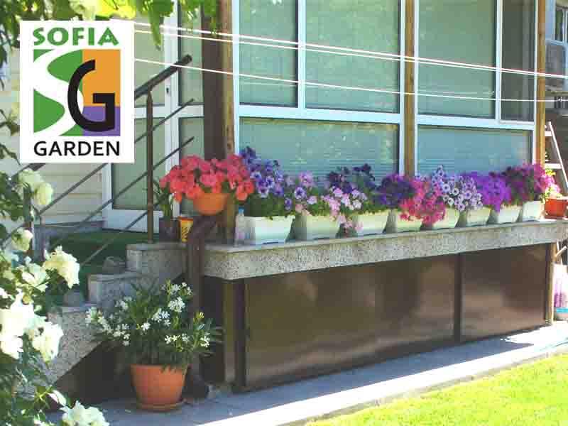 Озеленяване на остъклен балкон в частен двор