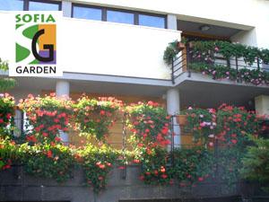 Озеленяване на тераса в къща