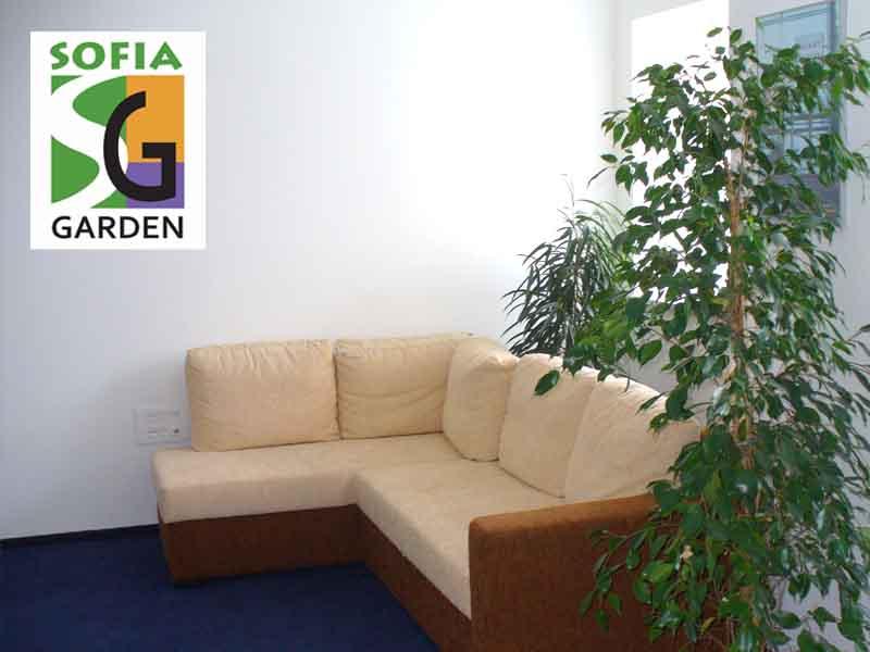 Интериорно озеленяване на офиси